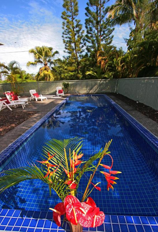 Your own beautiful, private pool - Ocean View Pool Jacuzzi 4BR 3Ba 25%OFF Aug&Sep2014 - Keaau - rentals