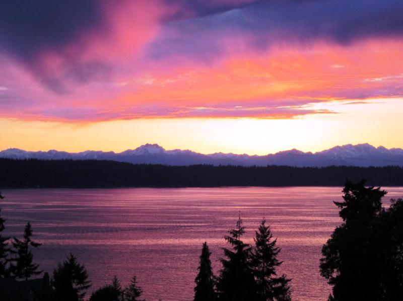 Welcome to Olympic View Private Cottage.  Enjoy our ever-changing sunsets. - Olympic View Cottage Bed and Breakfast - Seattle - rentals