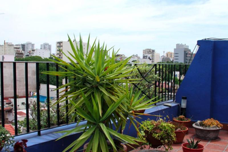 View from the terrace - 3 bedroom terrace apartment overlooking BA - Buenos Aires - rentals