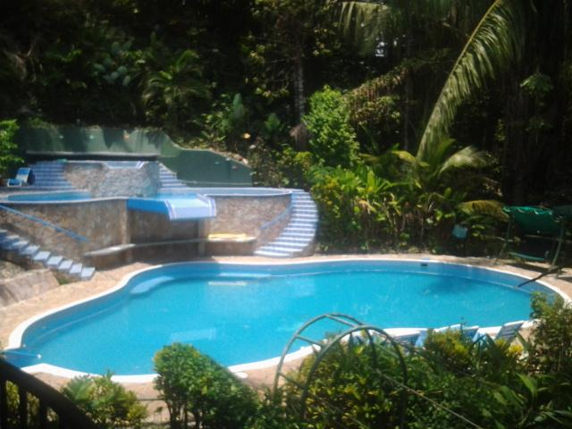 Villa has 3 pools, 2 waterfalls - 580 sq.feet Room, A/C, 3 Pools, Monkeys, Wifi - Manuel Antonio - rentals