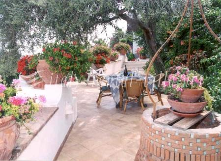 Garden - Casa Ida with large garden and great sea view - Praiano - rentals