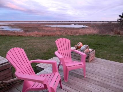 Just outside your back door is a beautiful view of a saltwater tidal pool. A side variety of bird species can be seen feeding in these pools. - A Bird's I View Cottage, Nova Scotia - Barrington - rentals