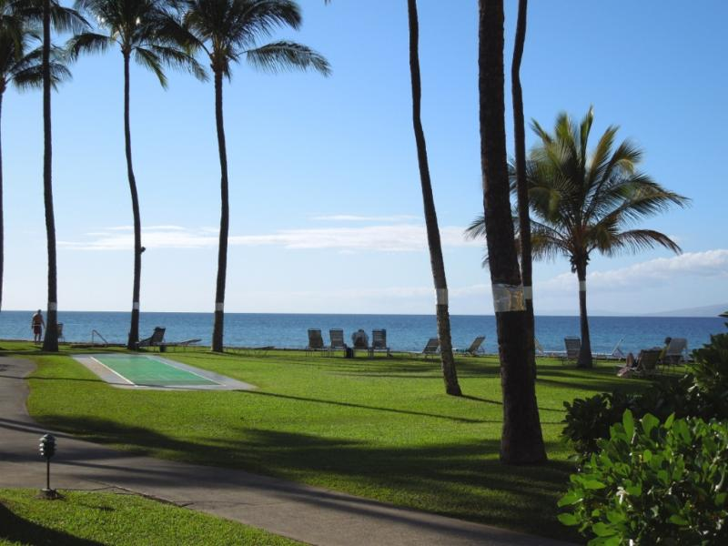 Breathtaking oceanviews and sunsets from our condo - **CALL FOR AVAILABILITY**Oceanview 1Bdrm G-108 - Kaanapali - rentals