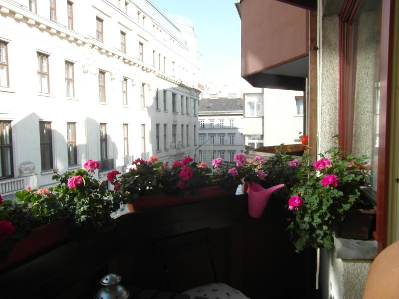 view from the terrace of the famous Vaci pedestrian street - Budapest, Aranykéz 6th Street, in the heart of the city!Free Wifi! - Budapest - rentals