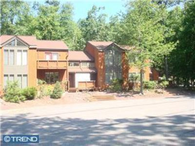 Front view - 3BR townhome on Big Boulder Mountain, Wifi.Sleeps8 - Lake Harmony - rentals