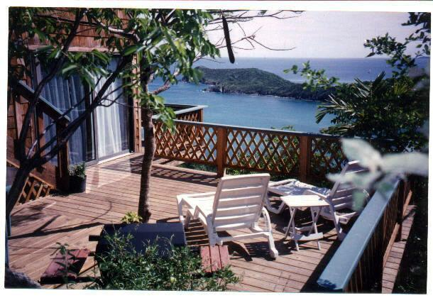 """Private deck w/ gas grill. Perfect for evenings at home. - Newly Renovated! Gorgeous Views from Caribbean """"Paradise"""" - Fish Bay - rentals"""
