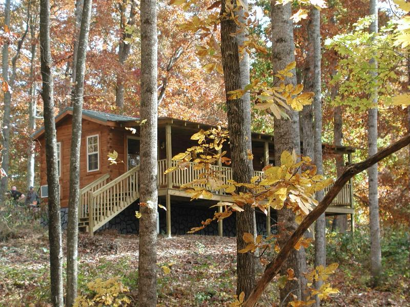 Mountain Cabin in Apple Country Hendersonville, NC - Image 1 - Hendersonville - rentals