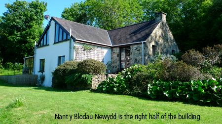 Pet Friendly Holiday Cottage - Nant Y Blodau Newydd, Newport - Image 1 - Newport - rentals