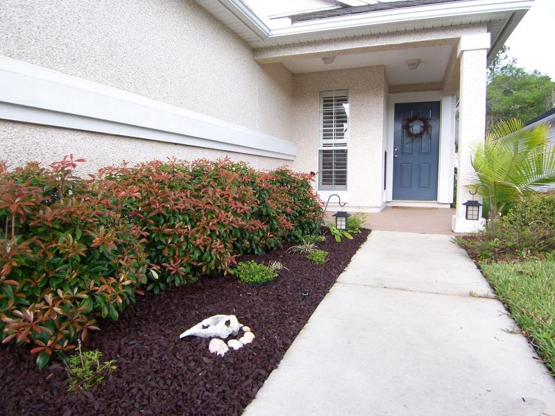 Entrance to our relaxing home - We welcome pets. Sept deals $110nt ($120nt wkend) - Saint Augustine - rentals