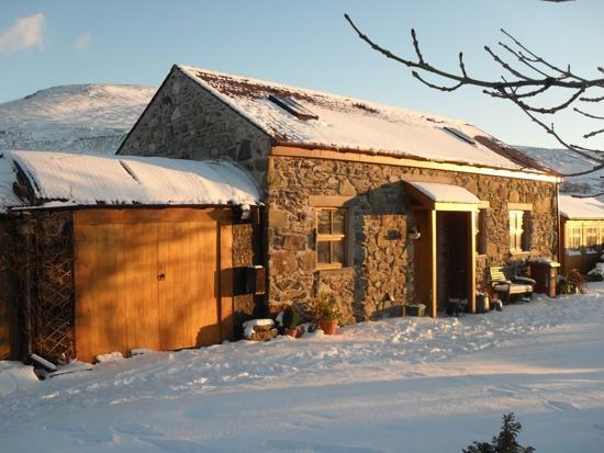 High in the mountains - Ysgubor snowdonia mountain stone built cottage - Llanberis - rentals