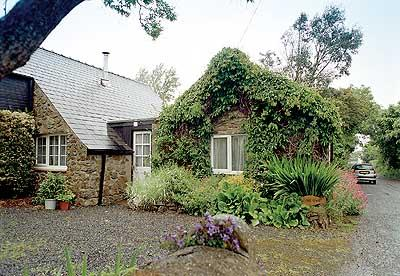Pet Friendly Holiday Cottage - The Old Shed, Cwm Yr Eglwys - Image 1 - Pembrokeshire - rentals