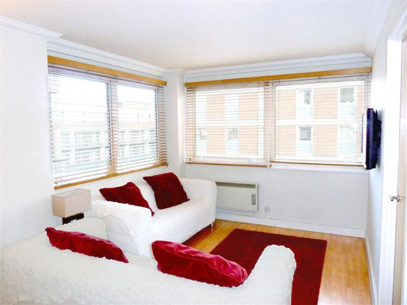 Living room with sofas, flat screen TV and large double-glazed windows - Beautiful Modern 3 Bed/2 Bath, Trendy Fitzrovia W1 - London - rentals