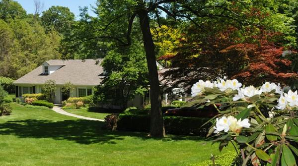 Front yard - Greenwich CT 3 Bedrooms Ranch House on Most Prestigious Block - Greenwich - rentals