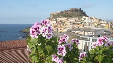 Full Relax In A Confidential Environment - Image 1 - Castelsardo - rentals