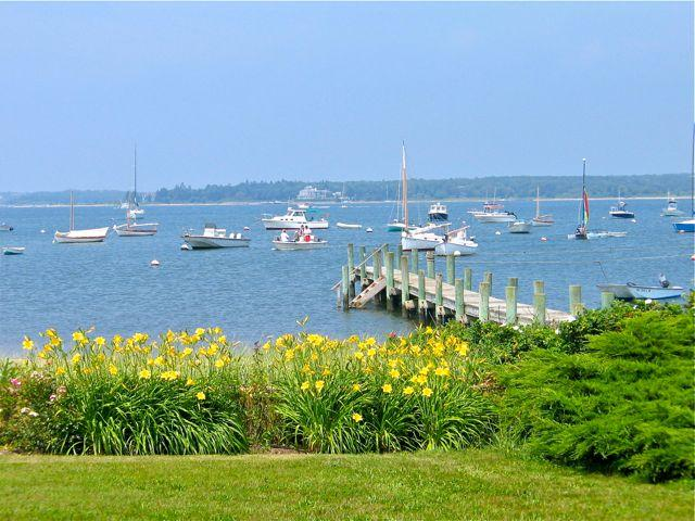 Katama Bay Waterfront! (Katama-Bay-Waterfront!-ED316) - Image 1 - Edgartown - rentals