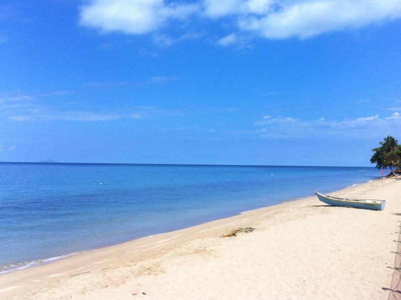 View of the north part of the beach with miles of seashore - Beachfront Luxury Apartment- Steps to the Water - Rincon - rentals