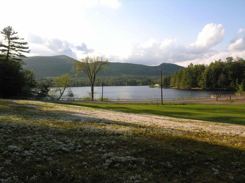 Our View  - Romantic Lakeside for Two - Gorgeous Views! - Wells - rentals