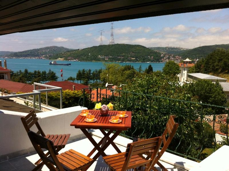 Bosphorus View from the Roof Terrace - Bosphorus View Renovated Turkish House - Istanbul - rentals