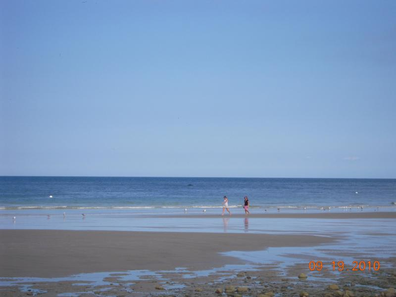 Private Beach 4 Bdrm. minutes to Plymouth Rock - Image 1 - Plymouth - rentals