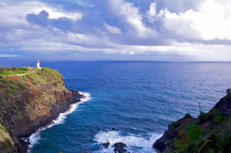 Kilauea Lighthouse - You will like this condo and location. Remodeled - Kapaa - rentals