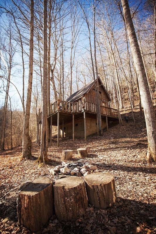 The Tree House - Image 1 - Natural Bridge - rentals
