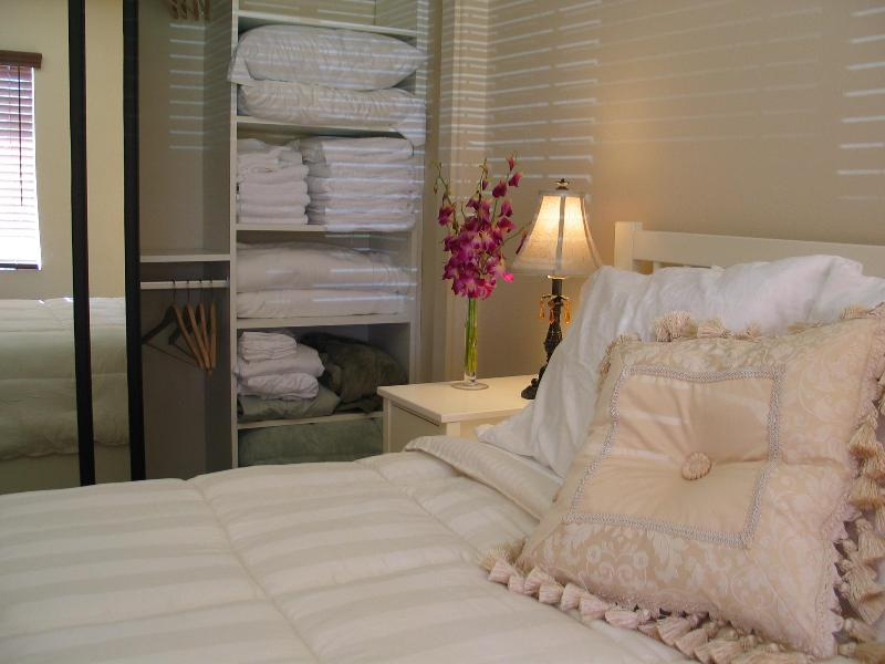 Beautiful 1 Bedroom Suite - Image 1 - La Jolla - rentals