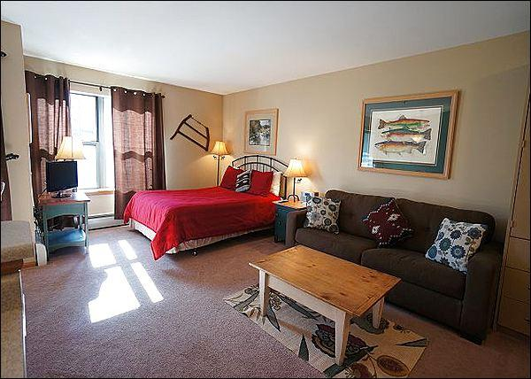 Studio Includes a Queen Bed and Sofa Sleeper - Cozy Studio Condo - Beautiful Slope Views (2028) - Breckenridge - rentals