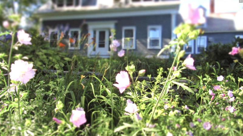 Front of house; many gardens - Charming Vt. Farmhouse with spectacular mt. views - Londonderry - rentals