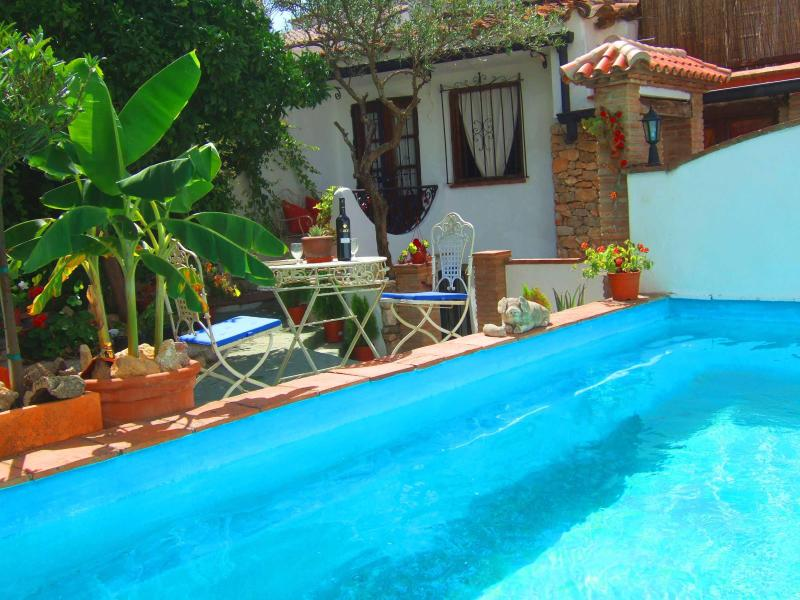 Pool and garden - 2 bedroom village house with pool and terraces - Gaucin - rentals