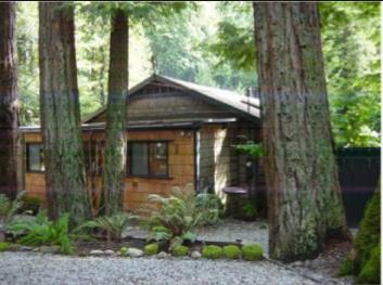Front of house, as viewed from the road - 3 Bedroom Cabin In Redwoods of Boulder Creek CA - Boulder Creek - rentals
