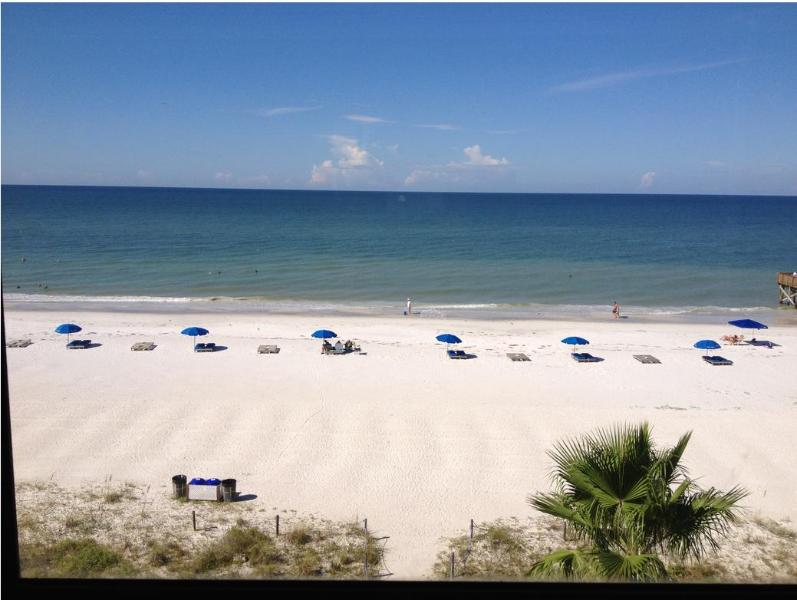 Actual view from Master Bedroom window - Gulf Front 2 bd condo-Beautiful Indian Shores area - Indian Shores - rentals
