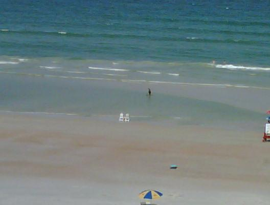 View from the Balcony - BeachFront Luxury Condo; Sweet Ocean Vista/ Breeze - Daytona Beach Shores - rentals