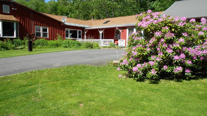 A perfect getaway for any season or reason! - Country Getaway w/a Dash of Panache Welcomes Pets! - Charlemont - rentals