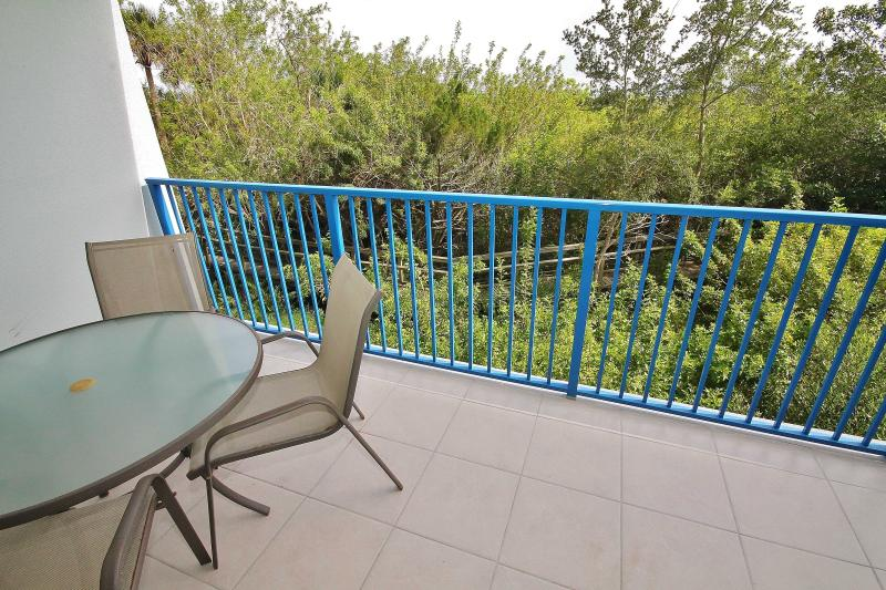 Nature Preserve View - Summer Bird Watchers Paradise at Oceanwalk - New Smyrna Beach - rentals