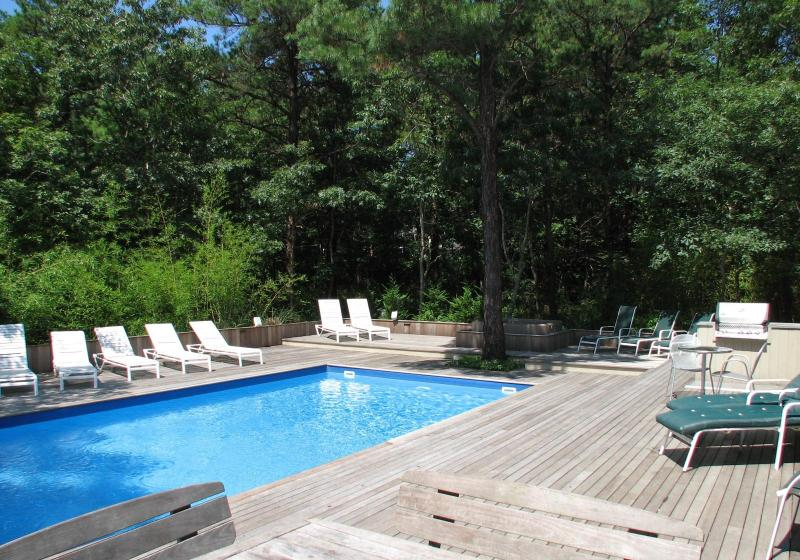 Heated Pool and Mahogany deck view - Short Term Rental w/Amenities and Best Location - Sagaponack - rentals