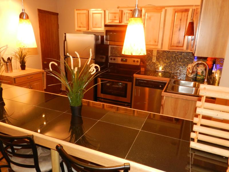 Modern kitchen - Modern Apartments, downtown, close to Main Street - Lake Placid - rentals