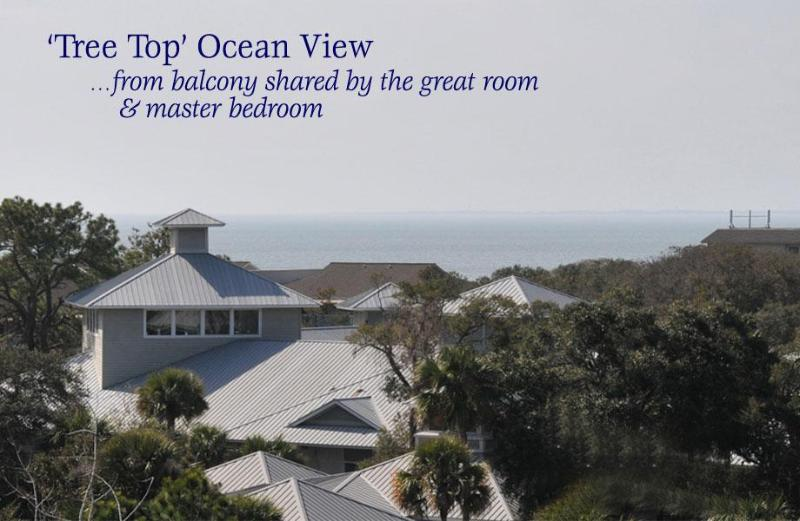 Penthouse with 'tree top' ocean view - 504 & (new!) 505 North Shore Place- Across from Beach! 2B/2B - Hilton Head - rentals