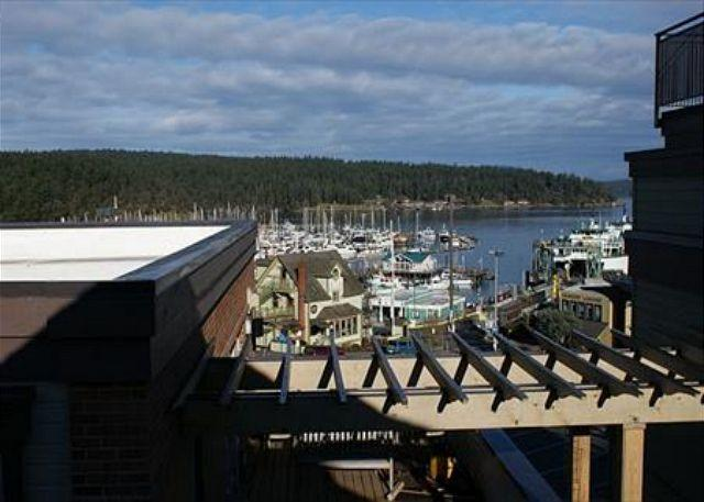 Situated right above the ferry landing the Churchill Plaza is the most conveniently located vacation rental in town! - Churchill Plaza #4 - Friday Harbor - rentals