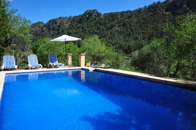 Private pool of the house - Holiday house in Andratx ID 2446 - Andratx - rentals