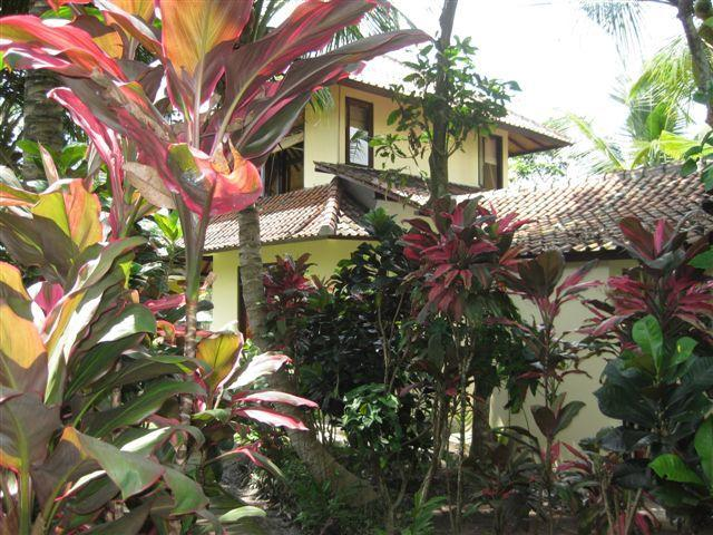 In its own private jungle .... - Tranquility in the Rice Fields of Ubud - Ubud - rentals