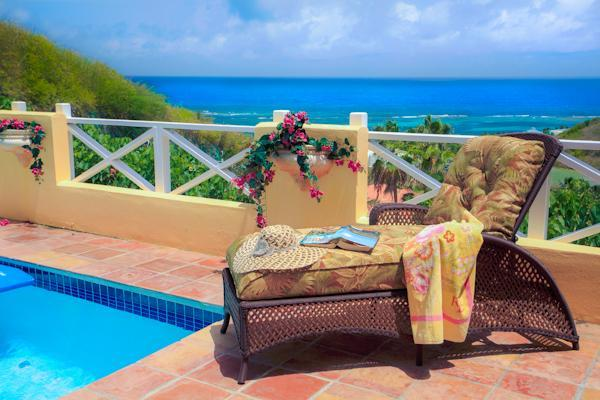 Enjoy this gorgous view of the Caribbean and a dip in the private courtyard pool - Private pool in your own luxury villa courtyard !! - Teague Bay - rentals