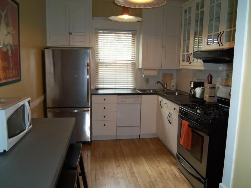 Kitchen - Urban Nest In Brick Brownstone - Minneapolis - rentals