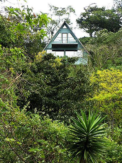 Nestled in the forest, yet a minute off the main road and easy to find - Casa Cielo- Secluded Cabin-Quiet Private Paradise - Monteverde Cloud Forest Reserve - rentals
