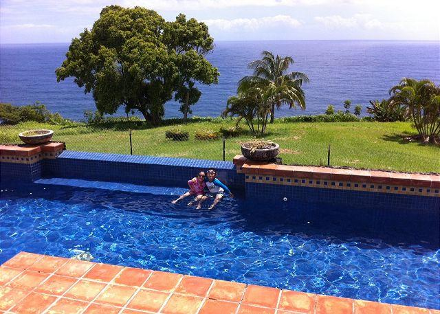 Cool off in the oceanfront pool! - Kailani Villa - Hamakua Coast Oceanfront Estate - Ninole - rentals