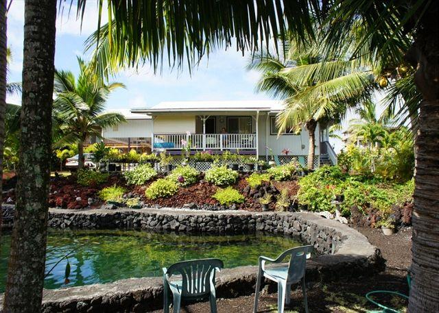 Splash in your own private, vacation tidal pond with tropical fish! - Sit By The Private Pond and Relax (Auntie Sylvias) - Pahoa - rentals