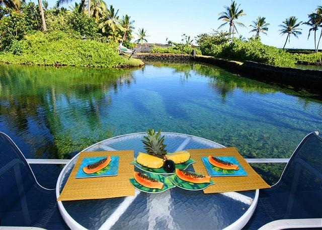 The lower level lanai is stocked with water toys and is a perfect place to relax before or after a swim. - Lagoon House - Huge Private Snorkeling Aquarium! - Kapoho - rentals