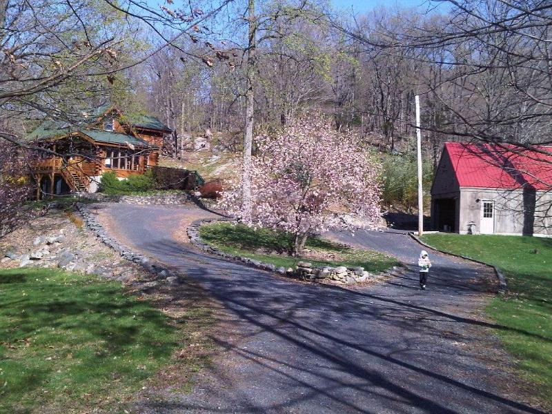 Log home on 7 mountain acres- 1hr 15 mins from NYC - Image 1 - Warwick - rentals