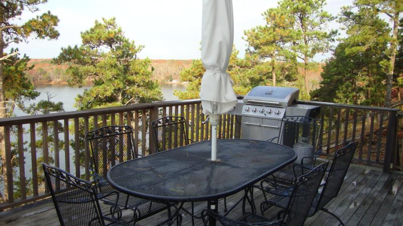 Perfect Vacation  Home - Sheep Pond  Brewster - Image 1 - Brewster - rentals