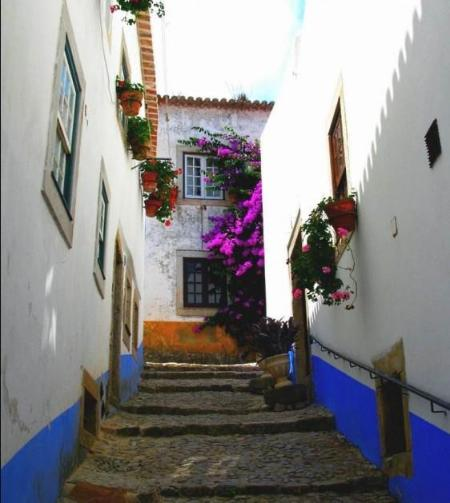 outside - 4 bedroom villa in the heart of Óbidos' Castle - Obidos - rentals
