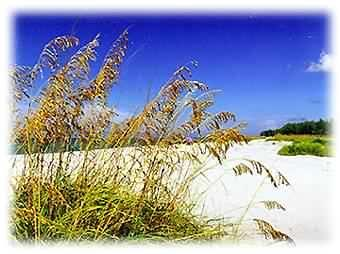 Bowmans Beach - Best Rates at Blind Pass on Bowmans Beach 2 bdrms - Sanibel Island - rentals
